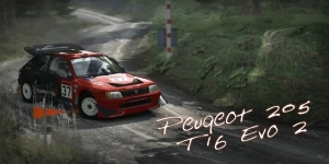 DiRT Rally Group B Peugeot 205 T16 Evo 2