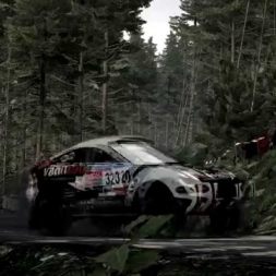 Dirt Rally.  Rally Rayd Mod Test