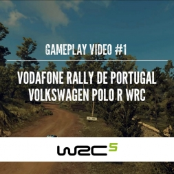 WRC 5 - First gameplay video