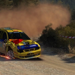 DiRT Rally - One Stage To Ruin It All