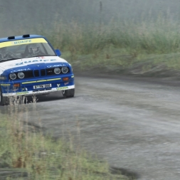 Dirt Rally | Breaking the Car