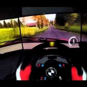 DiRT Rally - Mitsubishi EVO X @ Finland