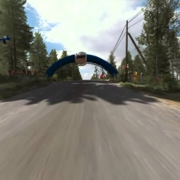 Dirt Rally - Kontinjarvi - '01 Ford Focus WRC - bumper cam