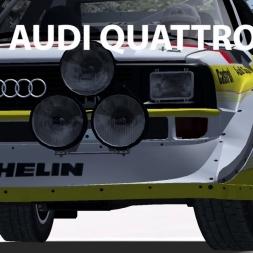 Audi Quattro S1 | Snow & Ice