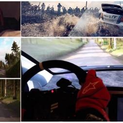 DiRT Rally I Onboard I FOV I Polo WRC 2015 I Finnland