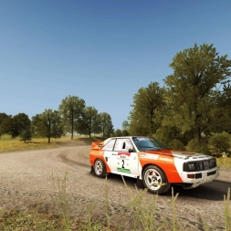 Dirt Rally Audi Quattro @Kreuzungsring reverse top 48 Replay+On Board