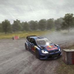DiRT Rally - Best Corner EVER?!