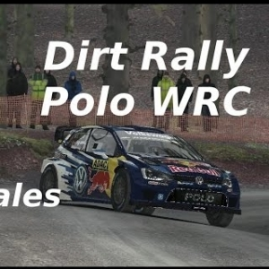 Dirt Rally // Time Attack °13 // Polo WRC // Wales