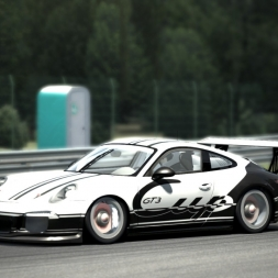 ASSETTO CORSA / PORSCHE 991 GT3 CUP CAR / DONINGTON PARK