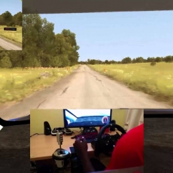 Dirt Rally Flugzeugring Polo R WRC