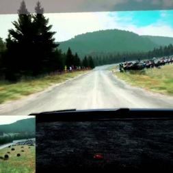 Dirt Rally Fferm Wynt Reverse Polo R WRC