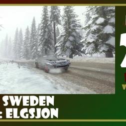 Dirt Rally - 24 - Elgsjon