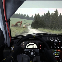 Dirt Rally Pays de Galles Bronfelen Peugeot 306 Maxi (20ème temps)