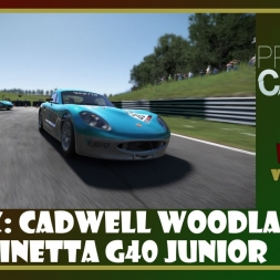 Project Cars - Ginetta G40 Junior - Cadwell Woodland