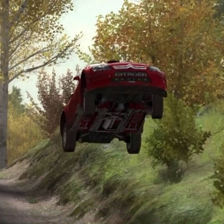 Dirt rally Assetto corsa un peu de WTF