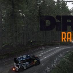 DiRT Rally - Fferm Wynt - Volkswagen Polo R WRC - #3 02:42.543