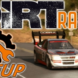 DiRT Rally Top 30 w/ DS4 - Peugeot 405 - Pikes Peak S1 - 1440p