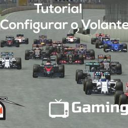 Vídeo dos Inscritos - Tutorial Como Configurar o Force Feedback (g27) rFactor 2 - Portugues [PT BR]