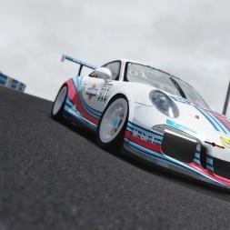 Assetto Corsa PC - Porsche 991 GT3 Cup @ Mount Panorama