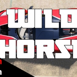 Hotlapping the Wild Horse Ferrari FXXK - Assetto Corsa Nordschleife POV