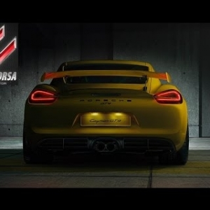Assetto Online: Cayman S and Cayman GT4 on the Ring!