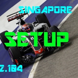 Singapore GP - Haas F1 Team - Setup (1.42.104) No Assists
