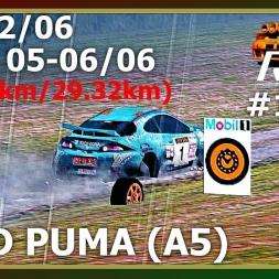 Rally Championship - Campeonato #11 - Ford Puma - Furo??? (PT)