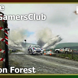 Dirt Rally - League - WRC GamersClub - Geufron Forest
