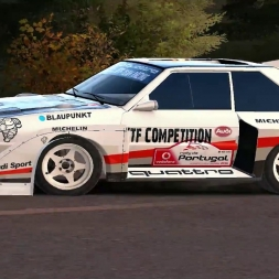 DIRT RALLY-Audi Quattro S1 Pikes Pike in Finland