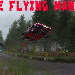 DIRT RALLY- Flying Manta in Finland