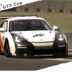 Assetto Corsa Porsche 911 GT3 Cup 2017 Tribute