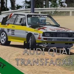 rFactor | Audi Quattro S1 | Transfagarasan | Gravel Test