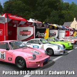 Porsche 911 3.0l RSR @ Cadwell Park - Automobilista 60FPS