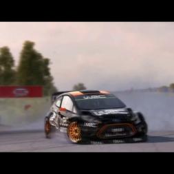 Dirt Rally Best Moment