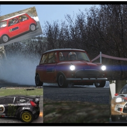 Sebastien Loeb Rally Evo and Dirt Rally # 2