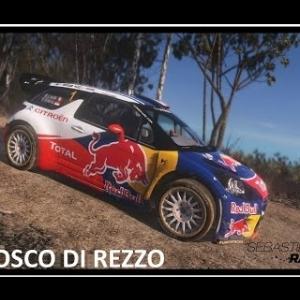 Sebastien Loeb Rally Evo - BOSCO DI REZZO