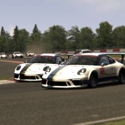 Assetto Corsa Porsche 911 GT3 Cup Nürburgring with Racedepartment