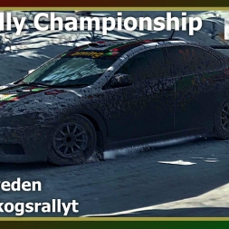 Dirt Rally - RDRC 08 - Rally Sweden - SS04 Slogsrallyt