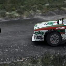 DiRT Rally 037 Wales Gamepad