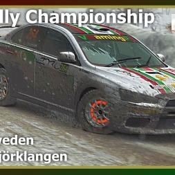 Dirt Rally - RDRC 08 - Rally Sweden - SS06 Björklangen