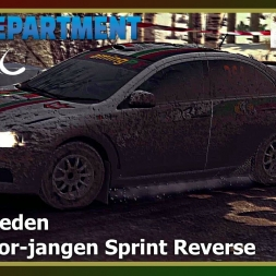 Dirt Rally - RDRC 08 - Rally Sweden - SS12 Stor-jangen Sprint Reverse