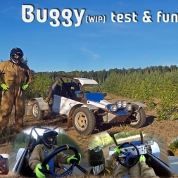 New Project. Buggy. The real FFB. :)