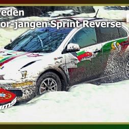 Dirt Rally - PTSims Rally Series 2017 - Rally Sweden - SS10 Stor-jangen Sprint Reverse