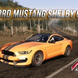 AC * Ford Mustang ART Shelby GT350R 2016 vs. Tajo [download]