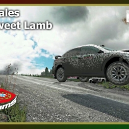 Dirt Rally - PTSims Rally Series 2017 - Rally Wales - SS05 Sweet Lamb