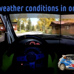 Dirt Rally/ Five weather conditions in one SS