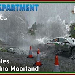 Dirt Rally - RDRC 08 - Rally Wales - SS02 Bidno Moorland