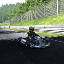 KARTS AT THE RING?! MK SIMSPORT MESS ABOUT! (PROJECT CARS)