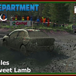 Dirt Rally - RDRC 08 - Rally Wales - SS05 Sweet Lamb