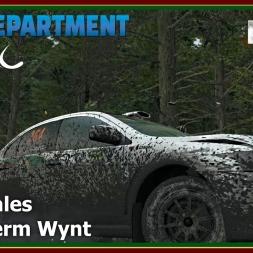 Dirt Rally - RDRC 08 - Rally Wales - SS07 Fferm Wynt